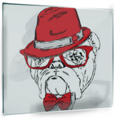 Panel szklany do kuchni - Funny bulldog vector. Bulldog wearing a hat with glasses and tie.