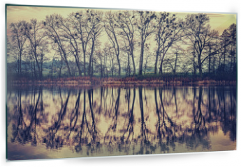 Panel szklany do kuchni - Vintage toned tree silhouettes reflected in a lake.