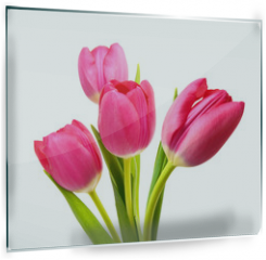 Panel szklany do kuchni - Flower Tulips as Symbol of Romance and Love