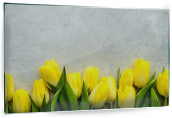Panel szklany do kuchni - Yellow tulips, spring easter background or anniversary gift for mothers day or card for women's day at 8 march