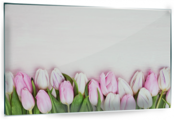 Panel szklany do kuchni - Pink and white tulips border on pink background. Copy space, top view. Holiday background