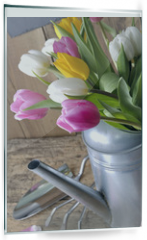 Panel szklany do kuchni - close on a bouquet of tulips in a metal watering can on a gardening table