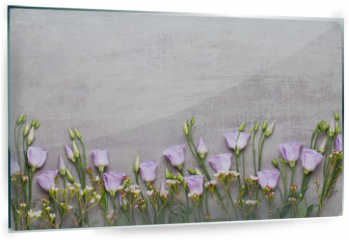 Panel szklany do kuchni - Spring greeting card, pastel color tulips on the gray background.