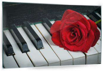 Panel szklany do kuchni - piano keyboard and rose