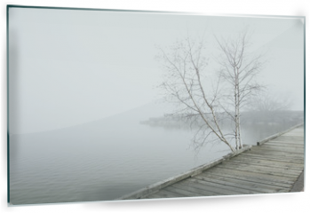 Panel szklany do kuchni - Pier and white birch trees on foggy lake