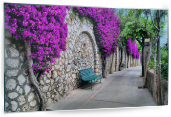 Panel szklany do kuchni - Vibrant flower draped pathway in Capri, Italy