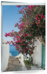 Panel szklany do kuchni - Traditional greek alley on Sifnos island, Greece