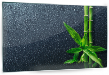 Panel szklany do kuchni - spa background - drops and bamboo on black