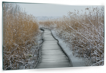 Panel szklany do kuchni - Boardwalk with frozen reeds