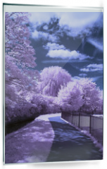 Panel szklany do kuchni - A path through the park - Infrared landscape