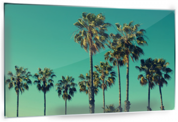 Panel szklany do kuchni - Palm trees at Santa Monica beach. Vintage post processed. Fashion, travel, summer, vacation and tropical beach concept.