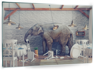 Panel szklany do kuchni - The elephant  in a restaurant